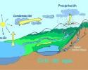imagen Los ciclos biogeoquímicos