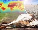 imagen Transformaciones climáticas